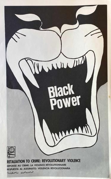 https://stanyakahn.com/files/gimgs/th-50_blackpowersmaller.jpg